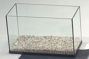 zavodim-akvarium
