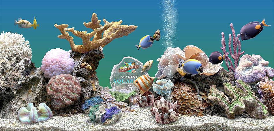 анимация аквариума на рабочий стол